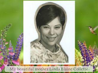 Linda Elaine Collette