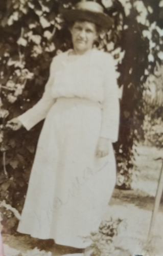 Nellie May Dole wife of Arthur Elliot Dole,mother of Nellie Hazel Dole
