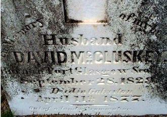 David McCluskey Grave