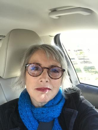 Vicki Lynn Singer Norris