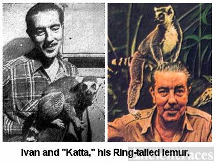Ivan Sanderson and Katta