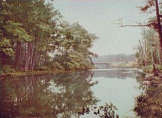 Bronx River in Bronx Park, New York