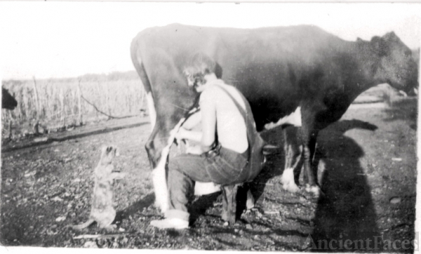 Grandmother Winifred Clayton Milking Cow