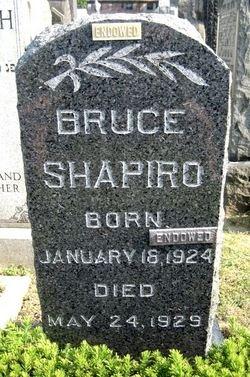 Bruce Shapiro Gravesite