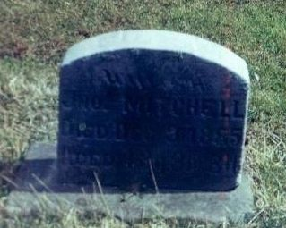 Susan Mitchell Tombstone