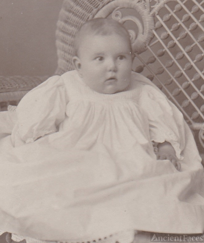 Gladys C. Tippet