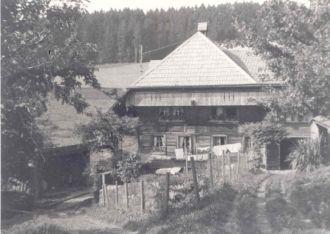 David Jegerlehner - Yegerlehner Farm in Switzerland