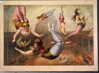 Female acrobats on trapezes at circus