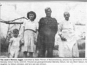 Seburn family