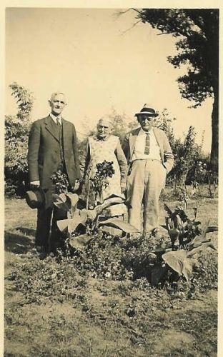 Albert Wayne, Priscilla, & Homer Sheeks