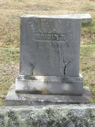 Bridget O'Neil Harris gravestone