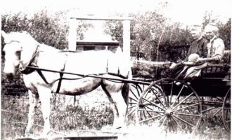 Capps Horse & Buggy
