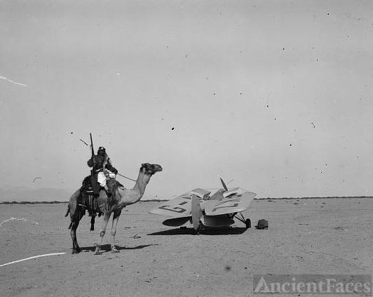 Camel & plane