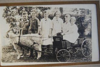 Goat Cart 1922