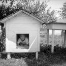 Bill  Boyce, doghouse