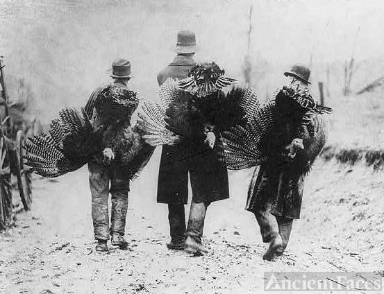 Thanksgiving, 1912