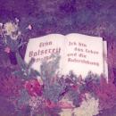 Erno Balsereit Gravesite