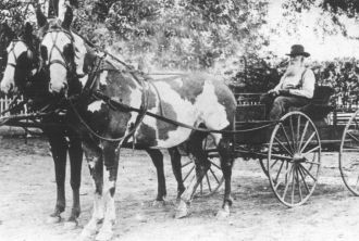 James Henry McCollum with Spotted Ponies