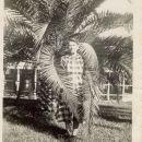 Adelaide Elizabeth Null/ King/ Hartman, FL