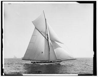 Gossoon, July 10, 1890