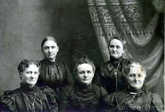 Amanda Hinton's Sisters