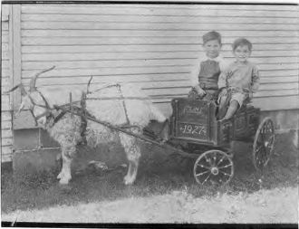 Johnson Boys with Goat and wagon