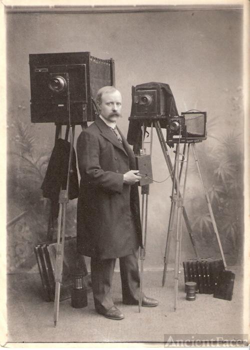 Gambier Curtis Reeks