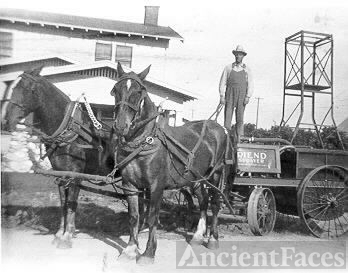 A.O. Lacey & His Citrus Grove Spray Business