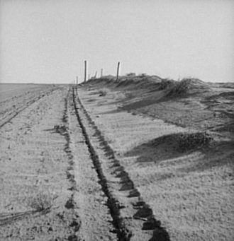 Sand drift along fence. Dust Bowl, north of Dalhart, Texas