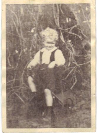 Unknown Chestnut male child