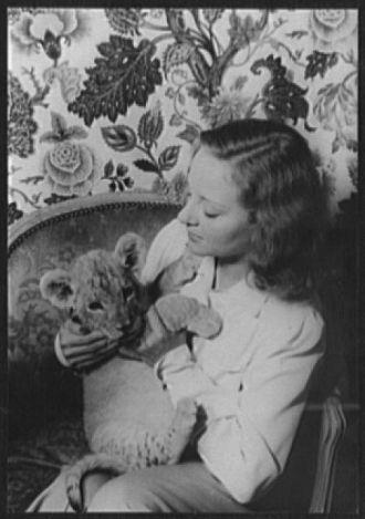 [Portrait of Tallulah Bankhead, with lion cub Winston...