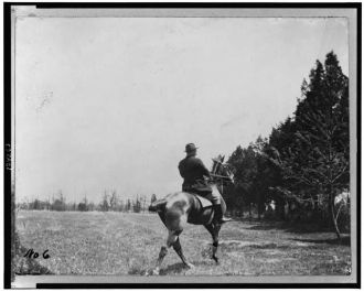 [Theodore Roosevelt, on horseback, rear view]
