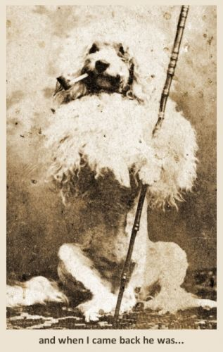 Pooch with Pipe 1880s