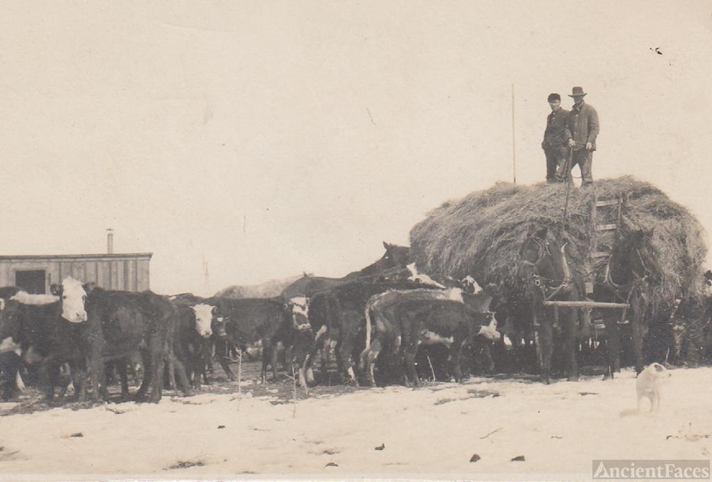 Hay Wagon at the Bar T ranch