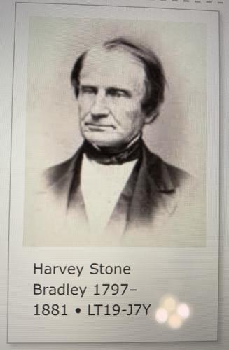 Harvey Stone Bradley