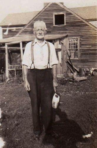 William Harrison Walsh