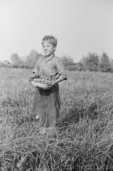 New Jersey child labor