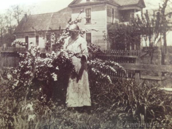 Harriet Elizabeth Taylor Lollar