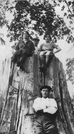 Tasker family picnic