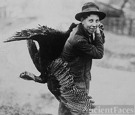 Thanksgiving turkey, c1912