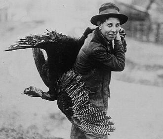 Thanksgiving turkey, c1912