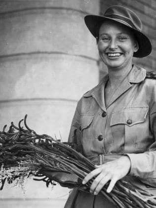WWII Nurse Vivian Bullwinkle