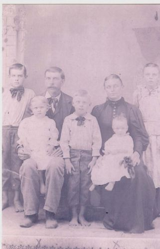 Henry Lee & Artimecia (Stratton) Johnson Family