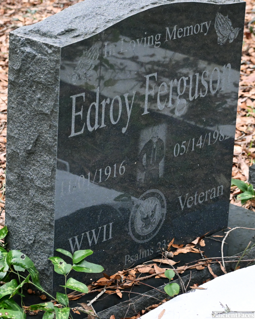 Edroy Ferguson