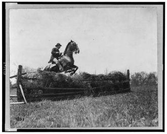 [Theodore Roosevelt, on horseback, facing right; jumping...