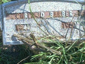Carla D. (Orticelli) Barber Gravesite
