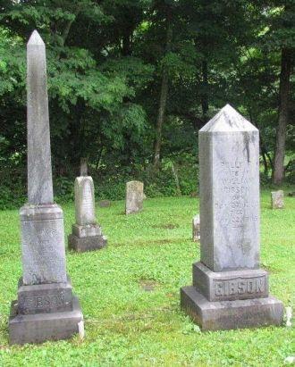 WILLIAM K GIBSON Gravesite