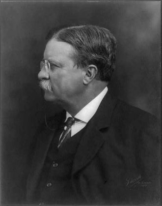 [Theodore Roosevelt, head-and-shoulders portrait, left...