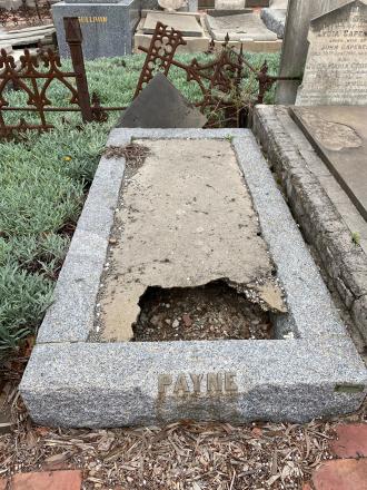 Lewis Charles Payne