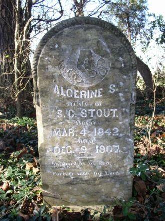 Stout, Algerine S.